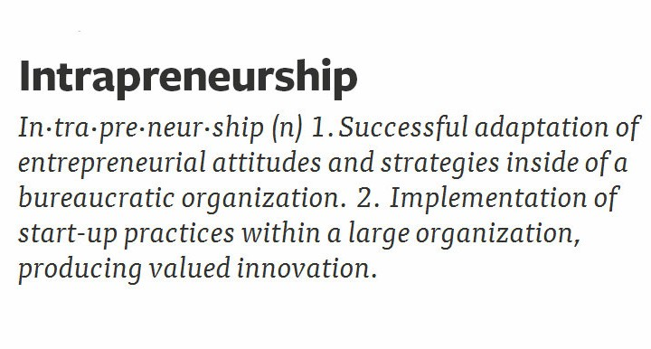 What Is The Meaning of Intrapreneur?