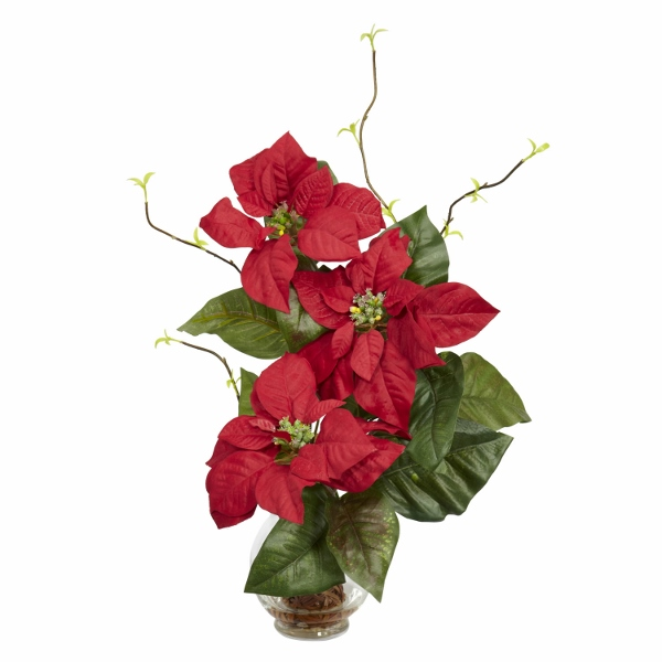 8 Amazing Poinsettia Day Images, Wallpapers, Photos For Facebook, WhatsApp