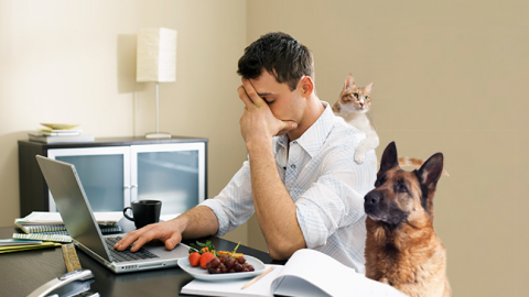 3 Opportunities Lost While Working From Home