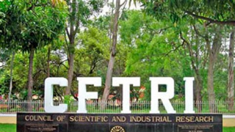 Central Food Technological Research Institute (CFTRI), Mysore Recruitment 2015 For 2 Posts