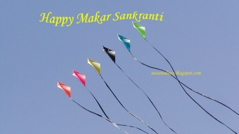Makar Sankranti 2015 Wishes: Best Makar Sankranti SMS For Facebook, WhatsApp
