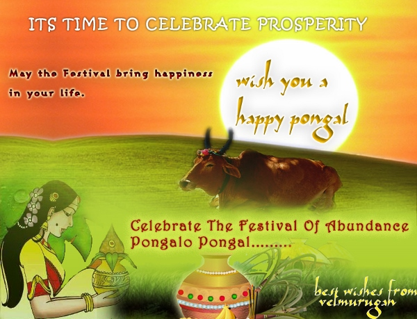 Happy Pongal 2015 HD Wallpapers, Pics, Images For Facebook, WhatsApp