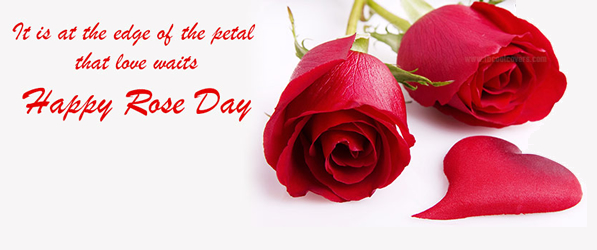 Happy Rose Day 2015 Images  (14)