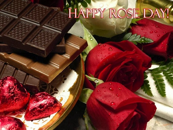 2015 Rose Day Facebook Photos, WhatsApp Images, HD Wallpapers, Pictures