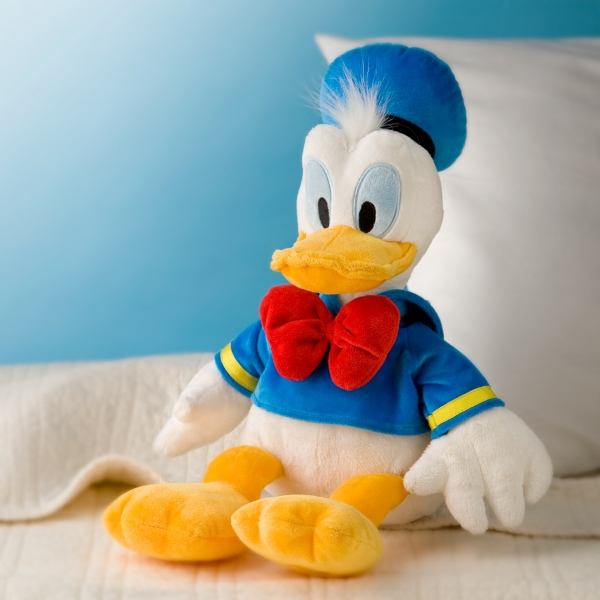 Donald Duck Day 2015 Images  (3)