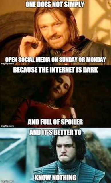 Game of Thrones Funny Memes (9)