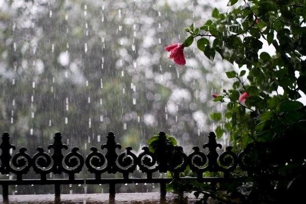 10 Monsoon Photos, Images That Defines The Beauty Of Kerala