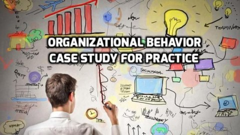 Organizational Behavior Case Study Practice No. 2