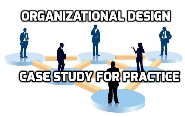 Organizational Design Case Study For Practice