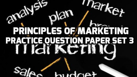 Principles of Marketing Practice Question Paper Set 3